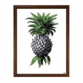 Cuadro colección Cambú pineapple moldura marrón 30 x 40