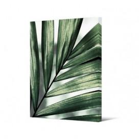 Cuadro hoja serie Tropic sobre lienzo