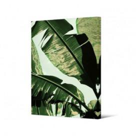 Cuadro hoja esterlicia serie Tropic sobre lienzo